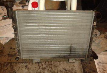 Kühler VAZ-2106: Austausch des Elements