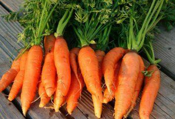 Hausgemachte Karotte: Rezept