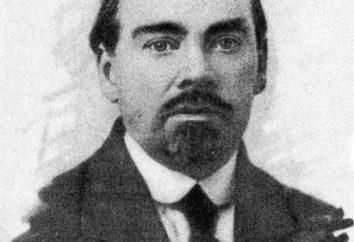 Alexander Alexandrowitsch Bogdanov (Malinowski): Biographie, wissenschaftliche Tätigkeit