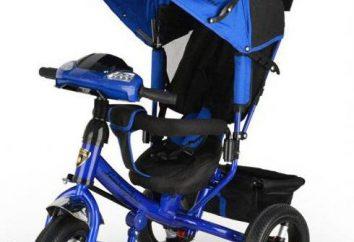 tricycles pour enfants « Lamborghini »: vue d'ensemble, modèle, description et commentaires