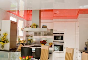 Stretch ceiling in the kitchen: opiniones y características
