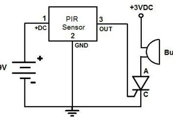 Wie machen Bewegungssensoren mit den Händen auf das Licht einzuschalten. Schaltplan