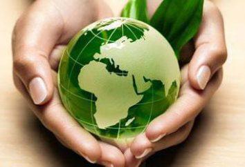 Umwelttechnologien. Das Problem der Umweltverschmutzung. Die Auswirkungen des Menschen auf die Natur