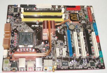 Płyta główna Asus P5LD2: funkcje, procesory i łączność