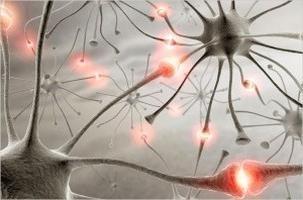 """El medicamento """"Letras"""" – un medicamento para la epilepsia"""