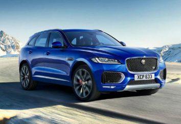 """""""Jaguar"""" Crossover: recenzje, opisy, specyfikacje i opinie"""