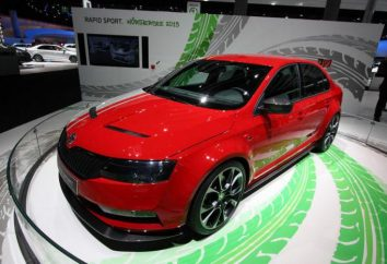 "Tuning ""Skoda Rapid"": Swede raffinement"