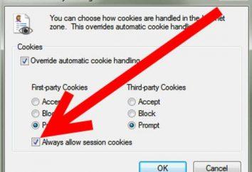 Co to są pliki cookie? Jak włączyć obsługę cookies w przeglądarce?