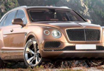 Bentley Bentayga – legendarny samochód terenowy z luksusowym wnętrzem