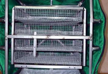 BTA – incubateur pour les œufs. Description, instructions, commentaires