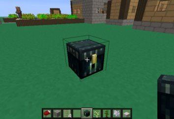 """Come fare un Ender petto in """"Minecraft"""": istruzioni per la creazione di un magazzino distribuito"""
