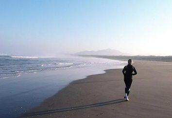 Perdere peso con l'aiuto della corsa: quante calorie vengono bruciate durante la corsa?