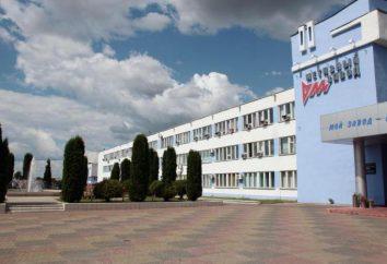 Rechitsa Zakłady Sprzętu, Białoruś