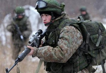 ¿Cómo descargar del ejército para la salud? Maneras posibles