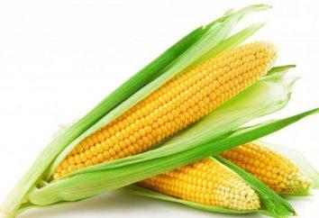 farinha de milho: os benefícios e malefícios. O uso de farinha de milho