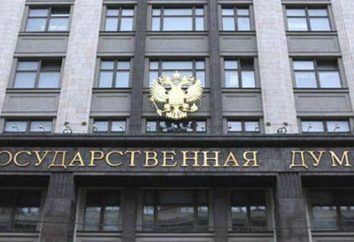 L'apparato della Duma di Stato: Storia e struttura