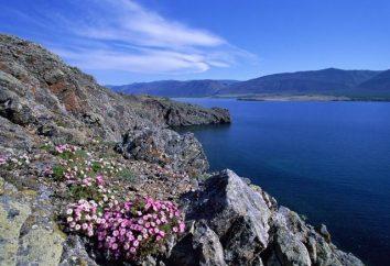 Bajkał – najgłębsze jezioro na świecie i najczystszym