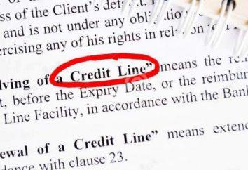 linia kredytowa – A … Rodzaje i charakterystyka linii kredytowych