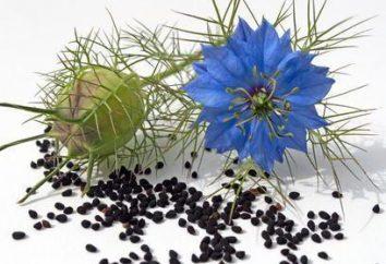 huile de cumin noir cheveux: avis