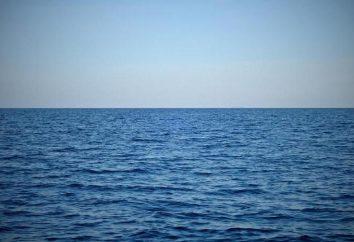 """""""Goccia nel mare"""": il significato di fraseologia, sinonimi e esempi di utilizzo"""