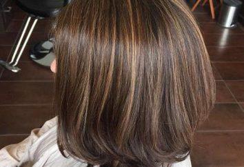 Pour Highlighted Shampooing Cheveux: sélection et conditions d'utilisation