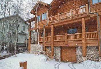 Ogrzewając dom drewniany: wybierz opcję opłacalny