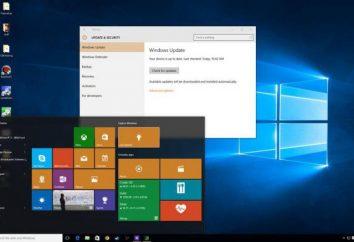 Wie Sie Windows 10 für den Schutz der Privatsphäre konfigurieren?