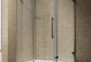 Kabiny prysznicowe: opinie, plusy i minusy, fot. Plusy i minusy prysznic z wanną