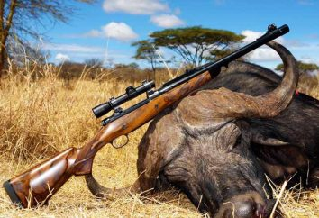 Was unterscheidet sich von der Düsenpistole? Jagdgewehr Fitting
