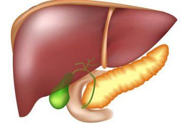 Oznaki i objawy zapalenia trzustki, zarówno mężczyzn jak i kobiet. Sposoby leczenia zapalenia trzustki