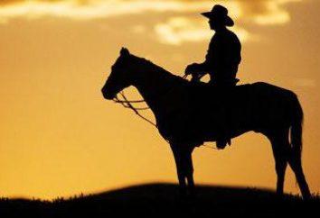 O que é ocidental. Os melhores filmes de faroeste: o nome ea descrição