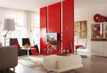 La séparation de la pièce en deux zones: la mode, élégant et facile