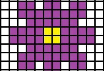 Dove trovare i più semplici schemi di ricamo croce? Ricamo per principianti ricamatrici