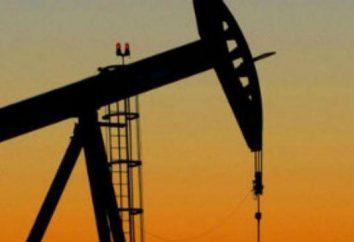 petrolio e gas Suzunskoye campo, Territorio di Krasnojarsk. prospettive di sviluppo