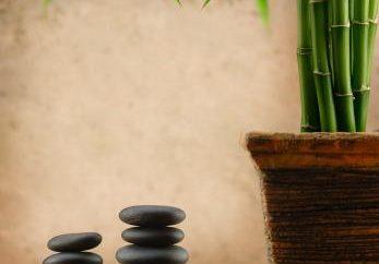 Feng Shui w mieszkaniu: tajemnice starożytnej metody