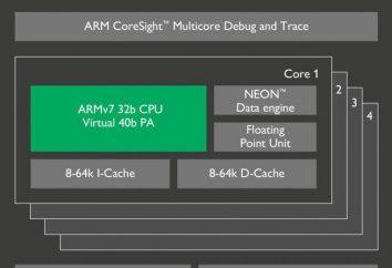 Procesor ARM Cortex A7: Cechy i opinie