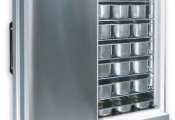 Domésticos armários frigoríficos – progredir a indústria de alimentos