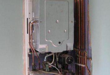 Kotły gazowe: ocena, instrukcje obsługi, dane techniczne