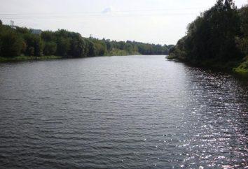 Pakhra River – wolność dla rybaka