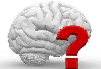 Bad memória na criança: o que fazer, as razões