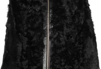 Escudo de una cabra para el vestuario