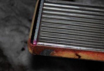 Remplacement du poêle dissipateur de chaleur « Niva-Chevrolet » avec ses propres mains