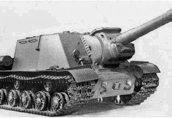 """Como chamada arma automotor SU-152? E """"erva de São João"""" era ela realmente?"""