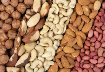 ¿Cuáles son los frutos secos? Frutos secos: nueces, avellanas, almendras, cacahuetes, pino – beneficios y los daños