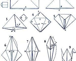 Wie machen Kraniche aus Papier aus Papier schnell und einfach