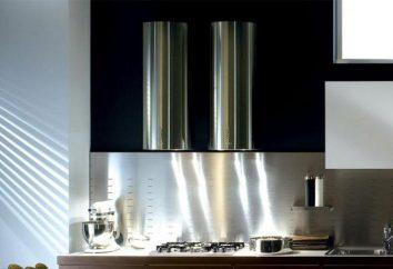 campana extractora de la cocina: ¿Qué es mejor, profesionales y compradores reales