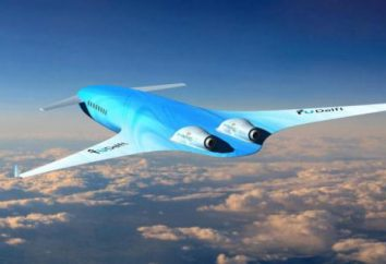 Mentre l'aereo sarà simile nel 2050