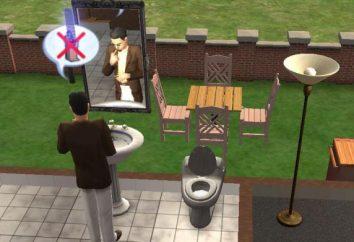 """Entwickler-Code """"Sims 2"""": Chancen"""