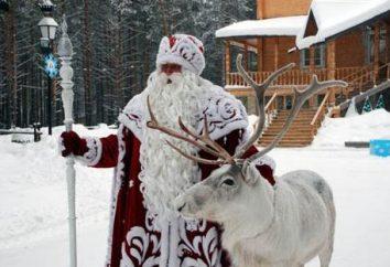 Año Nuevo en Rusia. ¿Dónde ir? 5 grandes lugares!