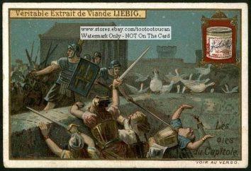 Gansos salvaron Roma, o en la historia de Zoología